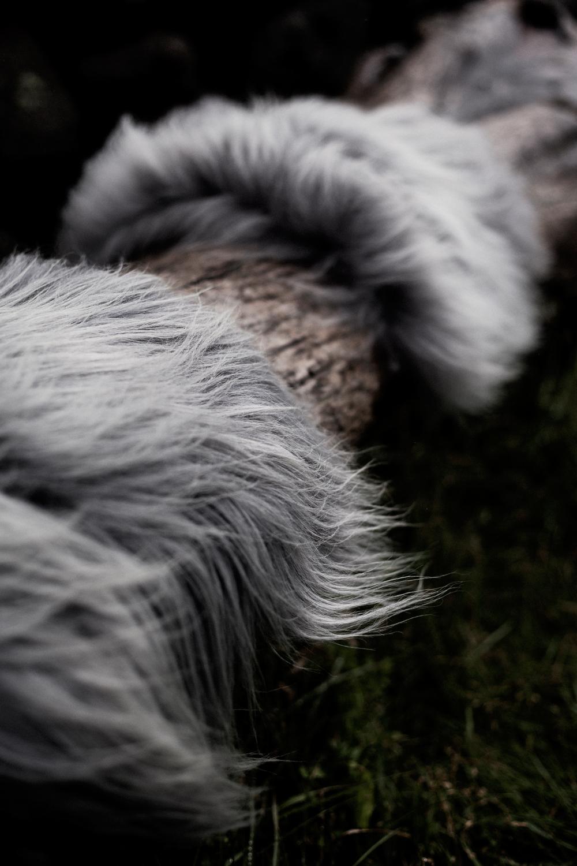 heals-the-organic-sheep-fur-rugs-throws-5