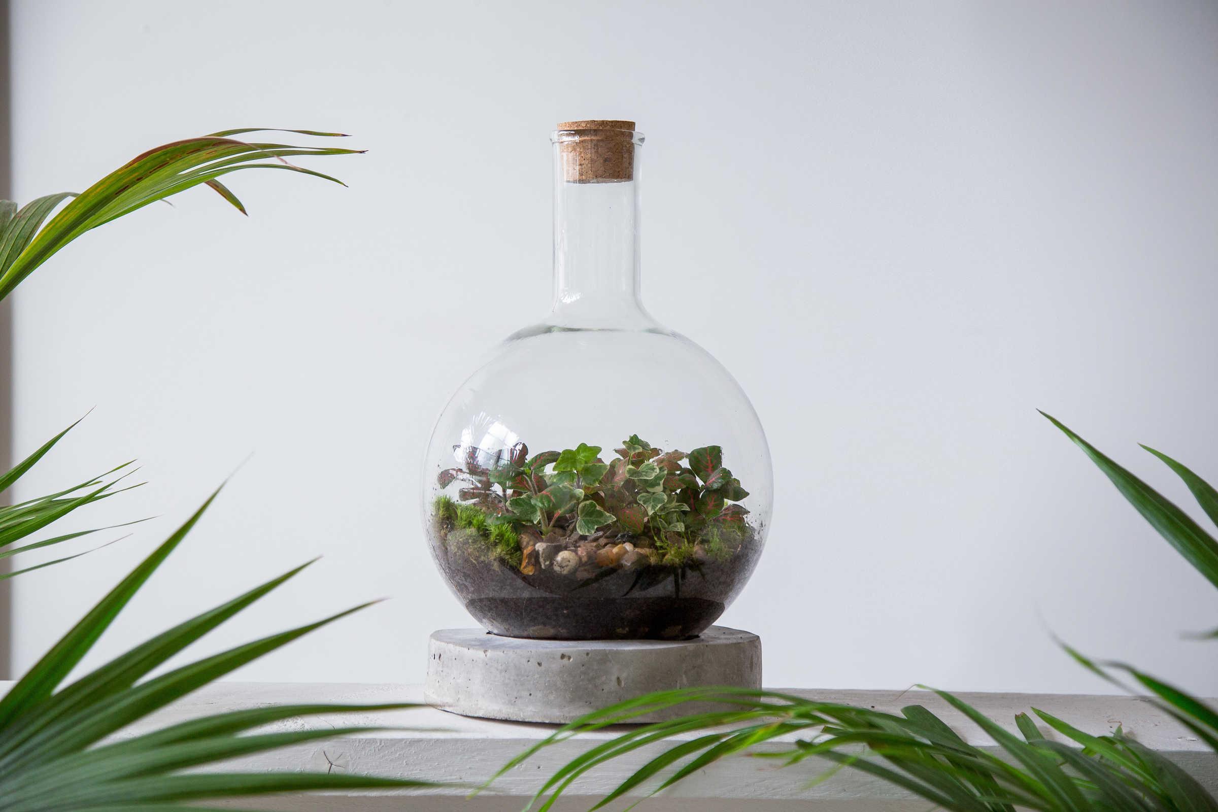 Heal's-modern-craft-market-made-in-london-london-terrariums