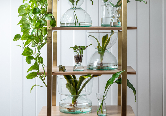 LSA Canopy Vases | Live sustainably by opting for recycled glass