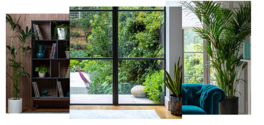 Biophilia remains popular as an AW20 interior design trend