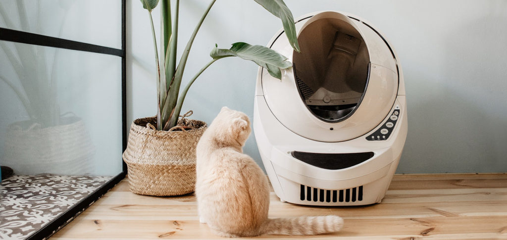 Smart technology for cats | Image courtesy of the Litter Robot