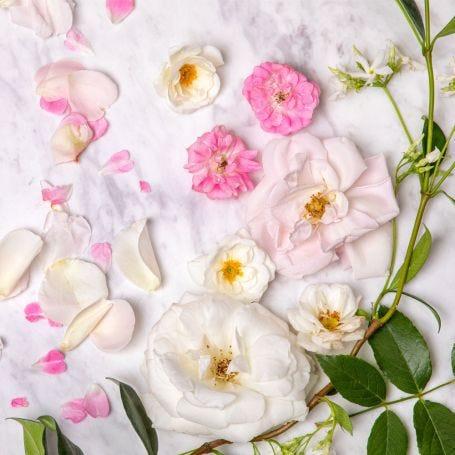 Flower Garden Diffuser Refill