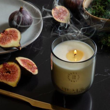 Petitgrain & Fig Dusk Candle