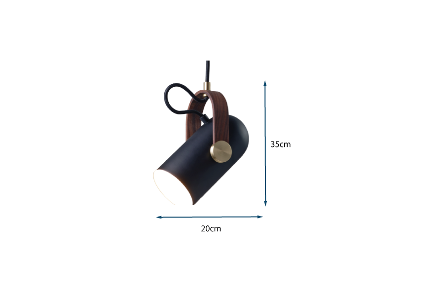 Carronade Pendant Light Medium